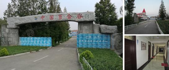 山东沂水食用百合研究开发中心采购滤中滤办公饮水机
